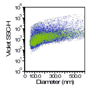 Vesicles (Green) vs all scatter events shows a large number of irrelevant particles such as lipoproteins or protein aggregates are detected using scatter.