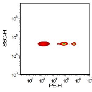 PE MESF nanoBeads